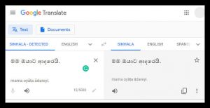 06+ Free Sinhala to English Online & Offline Translation Services